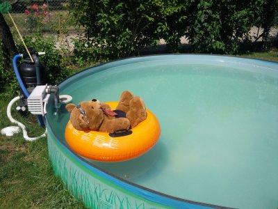 Pimmelbomm geht schwimmen