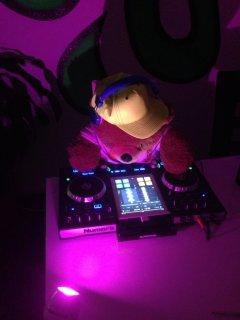 Die DJ's